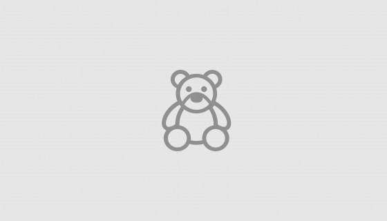 Robin Hood alla conquista di Sherwood